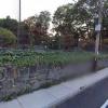 Outdoor lot parking on Beacon Street in Somerville