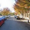 Outdoor lot parking on Engert Avenue in Brooklyn