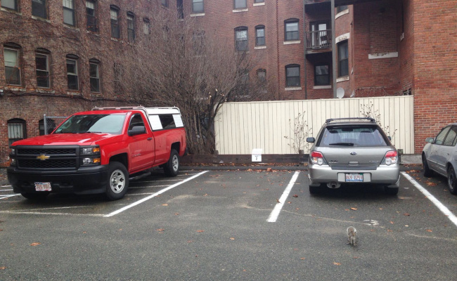Outdoor lot parking on Gainsborough Street in Boston