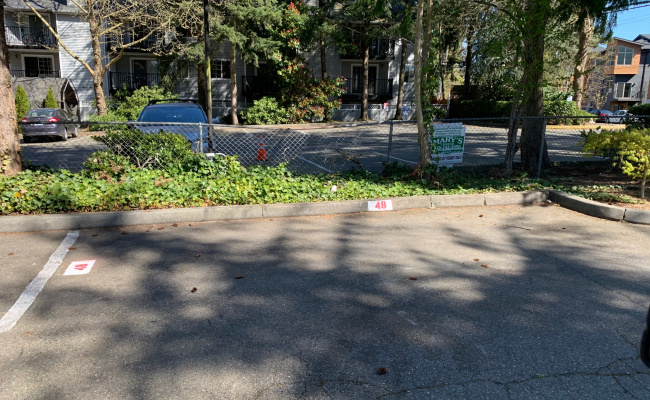 Outdoor lot parking on 73rd Avenue Northeast in Kenmore