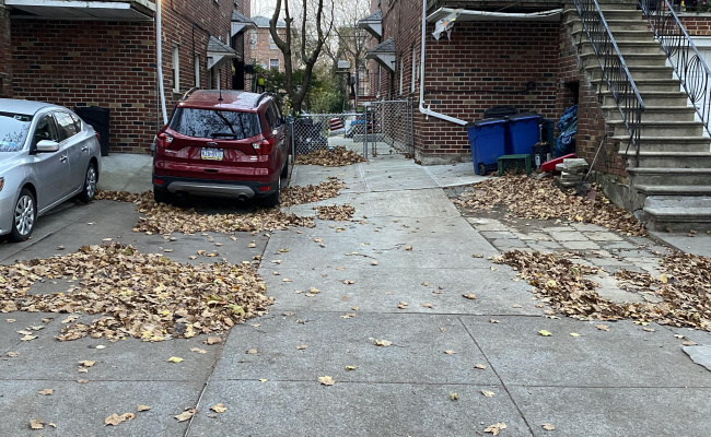 Driveway parking on East 69th Street in Brooklyn